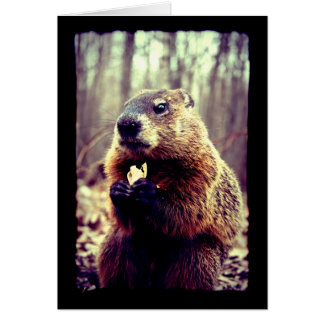 The Marmot and the Peanut Greeting Card