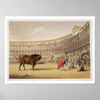 The Matador, 1865 (colour litho) Poster