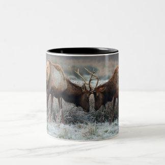 The Meeting of the Bulls  - Roosevelt Elk Coffee Mug