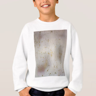 The Mesa Original Design The Vanishing People Sweatshirt