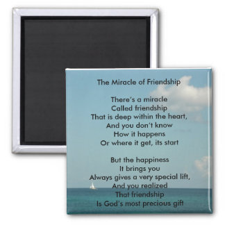 The Miracle of Friendship Square Magnet