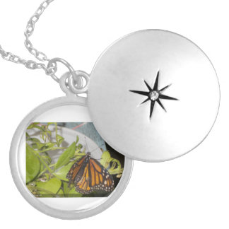 The Monarch Butterfly Locket Necklace