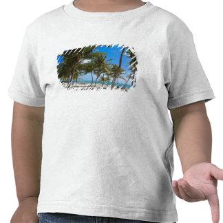 The Moorings Resort, Marathon, Key West, 2 T-shirts