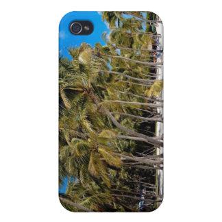 The Moorings Resort, Marathon, Key West, 3 iPhone 4 Covers