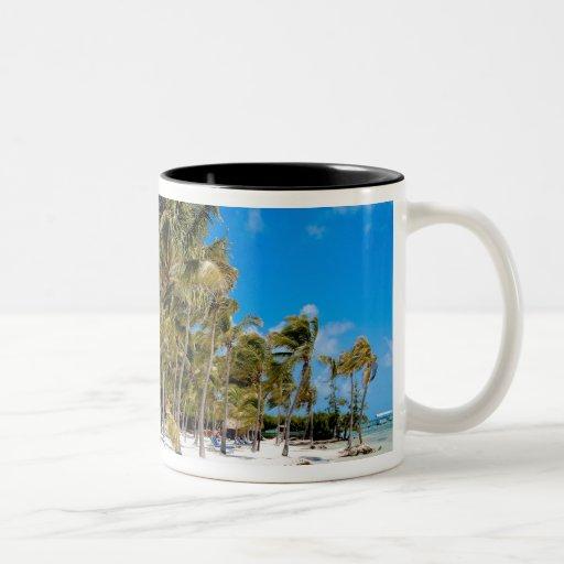 The Moorings Resort, Marathon, Key West, 3 Coffee Mugs