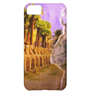 The mother of the children iPhone 5C cases