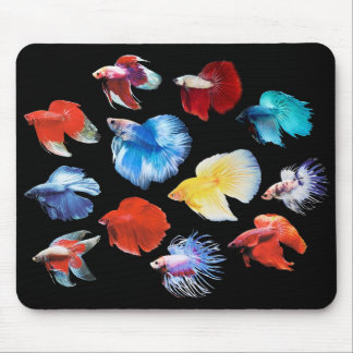 The mouse pad of Betta