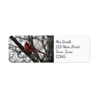 The Mr. Return Address Label