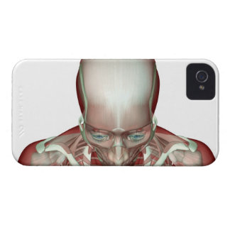 The Musculoskeletan of the Head and Neck 2 Case-Mate iPhone 4 Cases