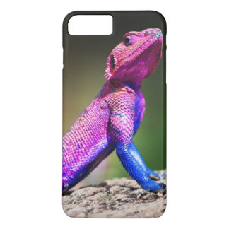 The Mwanza Flat-headed Agama on rock iPhone 7 Plus Case