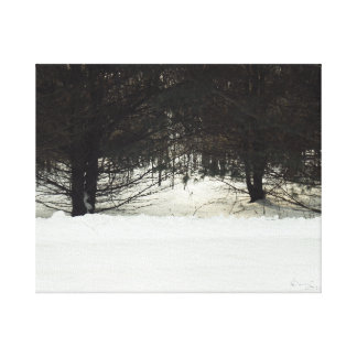 The Mystery Tree Canvas Print