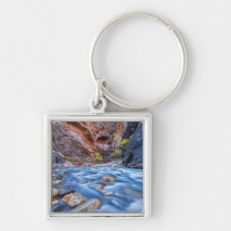 The Narrows Of The Virgin River In Autumn 3 Silver-Colored Square Key Ring