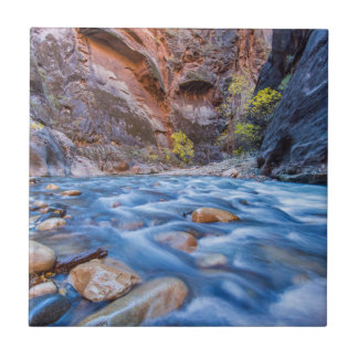 The Narrows Of The Virgin River In Autumn 3 Small Square Tile