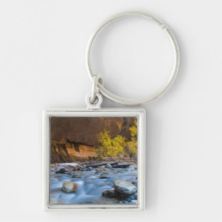 The Narrows Of The Virgin River In Autumn Silver-Colored Square Key Ring