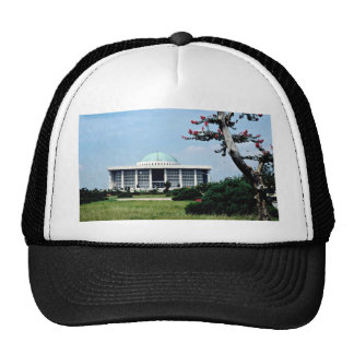 The National Assembly Building Mesh Hats