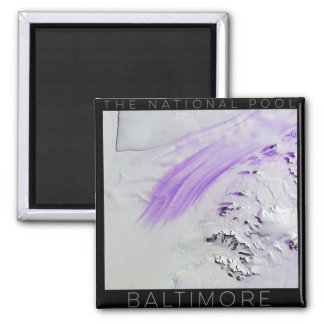 """The National Pool - """"Baltimore"""" Magnet"""