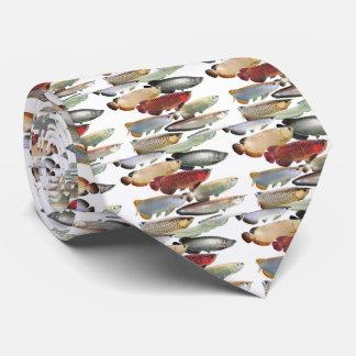 The necktie of Asian Arowana