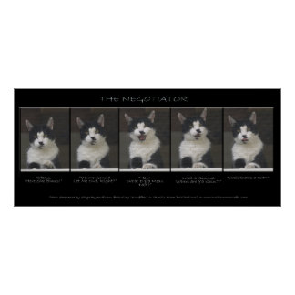 """""""THE NEGOTIATOR"""" Funny Cat Photo Sequence Poster"""