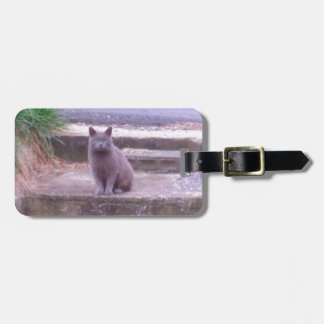 The Neighbors Grey Cat Luggage Tag