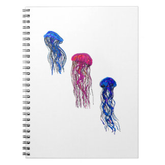 THE NEW PULSE SPIRAL NOTE BOOKS