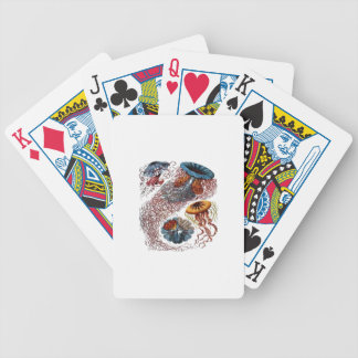 THE NEW SCHOOL BICYCLE PLAYING CARDS