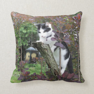 The Nibbler Cushion