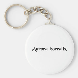 The Northern lights Basic Round Button Key Ring