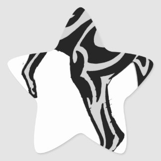 THE NORTHERN TERRITORY STAR STICKER