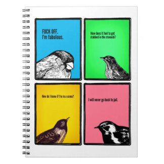 The Notebook (but with less kissing & more birds)