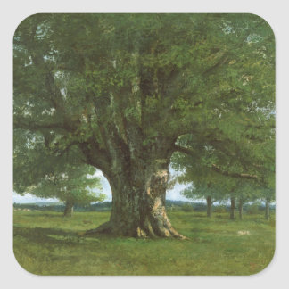 The Oak of Flagey, called Vercingetorix Square Sticker