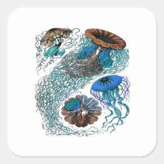 THE OCEAN PULSE SQUARE STICKER