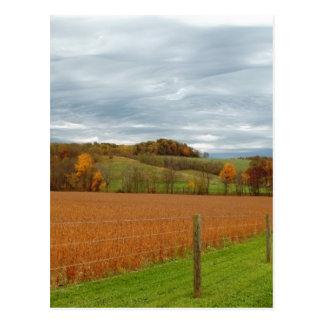The Ohio Valley Postcard