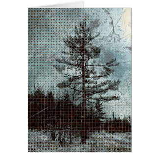 """The Old Pine"" Photo Art Card"