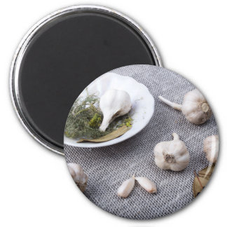 The old saucer, garlic and spices magnet