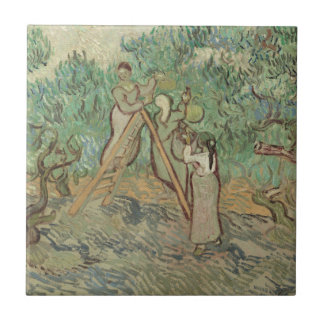 The Olive Orchard Ceramic Tile