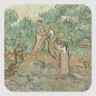 The Olive Orchard Square Sticker