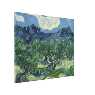 The Olive Trees - Van Gogh Canvas Print