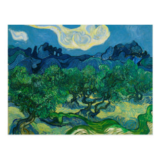 The Olive Trees with Alpilles Vincent van Gogh Postcard