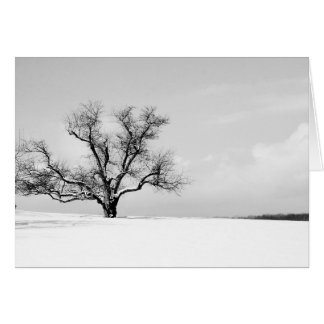 The One Tree in Winter Greeting Card