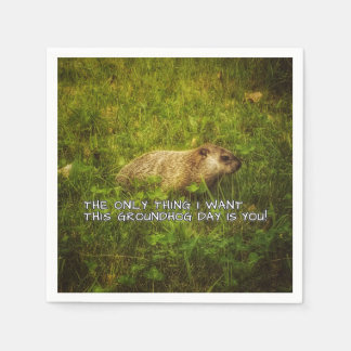 The only thing I want this Groundhog Day napkins Disposable Napkins