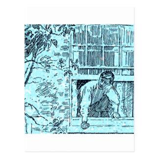 The open Window Postcard