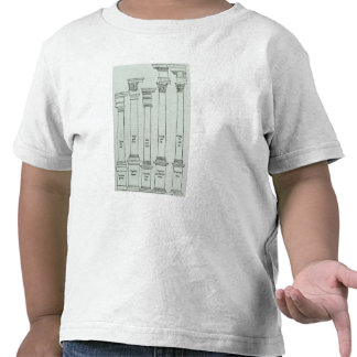 The Orders of Architecture T Shirts