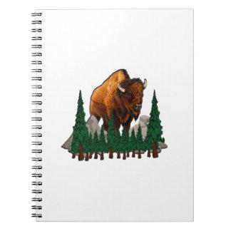 The Overlook Notebook