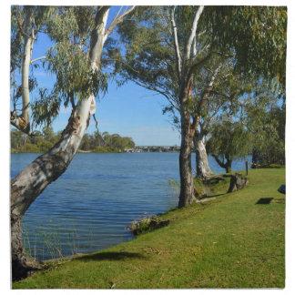 The Park Bench, Berri, South Australia, Napkin