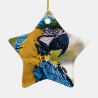 The Parrot Ceramic Ornament