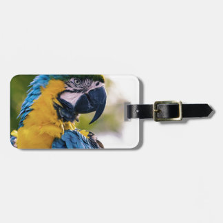 The Parrot Luggage Tag