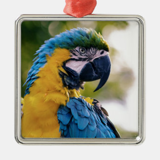 The Parrot Metal Ornament