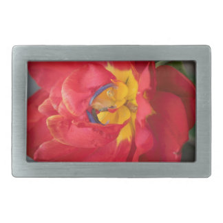 The Parrot Rectangular Belt Buckle
