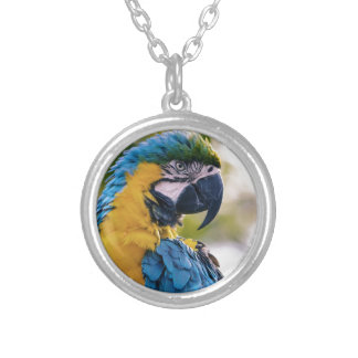The Parrot Silver Plated Necklace
