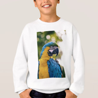 The Parrot Sweatshirt